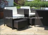 Синтетическая Wicker мебель Gn-8639d сада