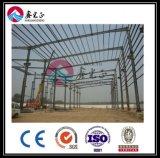 Magazzino d'acciaio della struttura di costruzione di ISO9001&BV (BYSS022011)