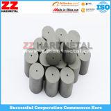 O forjamento frio do carboneto cimentado do tungstênio morre com melhor preço