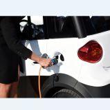 2 мест профессиональный дизайн электромобиль без водительского удостоверения
