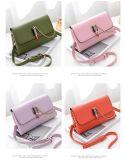 De Zak van de Ontwerper van Nice van de Zak van de Vrouwen van de Zak van dame Small Bag Fashion Bag Ketting (WDL0146)