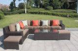 Insiemi profondi di lusso di conversazione del patio della disposizione dei posti a sedere con l'ammortizzatore di Sunbrella