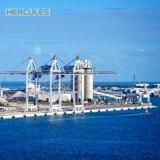 Hochleistungs--Hafen Using Portalkran