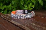 Leopard Imprimer rougeoyant rechargeables USB Dog collars