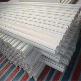 Tubo materiale della plastica dell'acqua calda PPR dei prodotti di alta qualità del tubo del polipropilene