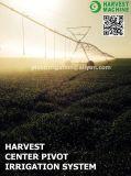 Landwirtschaft Zwei-Rad seitliches Bewegungs-Bewässerungssystem für Verkauf
