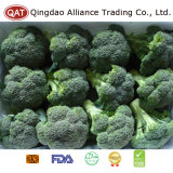 Hochwertige gefrorene Brokkoli-Stangen mit gutem Preis