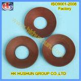 Fournir tout le genre de rondelle à ressort la galvanoplastie (HS-SW-0015)