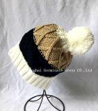 Горячая продажа мода вязание Red Hat (JTB214)