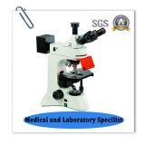 Bz130f LEDの蛍光研究の顕微鏡