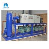 Doppia temperatura del Regular del compressore di Bitzer dell'unità di parallelo della fase