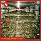 De industriële Hete Drogende Machine van het Voedsel van de Vissen van de Luchtcirculatie