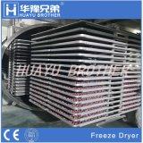 Strumentazione di secchezza di grande capienza di Vd-200r di vuoto del disidratatore del cassetto industriale dell'essiccatore per gli ortaggi da frutto
