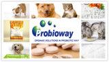 Дополнение Probiotics естественного органического любимчика питательное для кота собаки