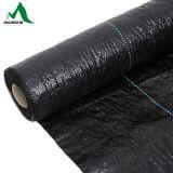Géotextiles de tissu tissés par construction de haute résistance