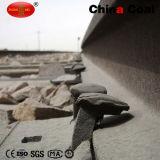 Transitoire de vis de chemin de fer du charbon Q235 de la Chine
