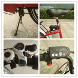 Motolife 2015 Pedal Assisted Electric Bicycle с Rear Rack