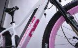 Il più in ritardo la maggior parte hanno accolto favorevolmente la signora di vendita calda Fat Tire E Bike