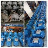 Bomba de água centrífuga da irrigação elétrica com Barss/impulsor plástico (CPM146)