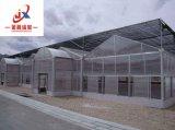 PC Gewächshaus-Gewächshaus im Fabrik-Preis und in der guten Qualität