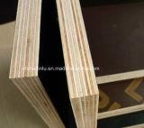 Película do preço das vendas de fabricante de Binlu diretamente a boa enfrentou a madeira compensada para o derramamento concreto