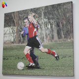 Indoor (BL-CBP04)를 위한 사진 Printing Canvas Banner