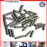 カスタムステンレス鋼の精密Laperスタブロックのイジェクタ押しの安全糸のコアガイドの金属