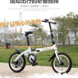 نمو زاهية علبيّة يطوي جديات درّاجة