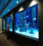 50mm 80mm de espesor de la hoja de acrílico transparente claro para los acuarios