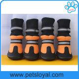 Le Pet Produit 3 de la saison de la mode des chaussures de luxe Bottes Pet chien