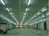 Cámara fría Wharehouse del estándar industrial