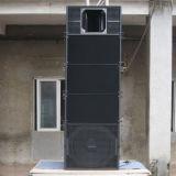 De dubbele PROAudio van de Serie van de Lijn van 10 Duim Compacte (q-1)