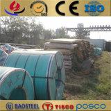 ASTM A480 316h 316 Stainelss bobina de aço laminados a quente para a indústria alimentar