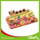 Детский крытый деятельности Soft Play для детских садов