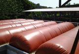 100m3 Biogas Plant per Farm Livestock Manure Treatment