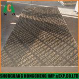 Пленки, с которыми сталкиваются с Hongcheng фанеру для строительства