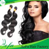 Верхний класс необработанные бразильские Реми Виргинских человеческого волоса Weft волос