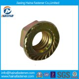 Steel/Carbon inoxidables Steel/Galvanized Hex Nut, Cap Nut, Flange Nut, Square Nut et Wing Nut