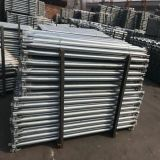 La norma internacional Andamios Layher/anillo de aluminio andamios