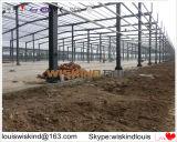 А также Deisgned Сборные стальные склад для продажи