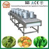 商業ドライヤー装置のフルーツ野菜の空気乾燥機械