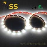 Tipo più luminoso illuminazione della decorazione S del segno di striscia del LED 2835 60 LED