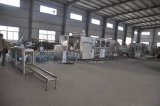 600bph-1000bph Water Treatment Plant Filling Packing Machinery