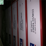 Ursprüngliches SKF Deep Groove Ball Bearings 6205 2z/C3 Bearing