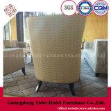 Mobilia dell'hotel con la presidenza di svago del salone da vendere (YB-C402)
