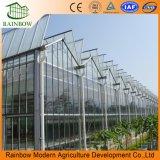 Используемые голландские Венло стекла в стиле выбросов парниковых газов при движении люка крыши