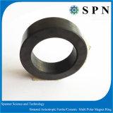 팬 모터를 위한 단단한 알파철 /Ceramic 영구 자석 또는 소결된 다극 자석 반지