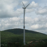 세륨 Approved Wind Turbine Direct Driven Wind Generator 10kw