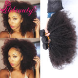 Um cabelo humano Kinky do Afro natural Curly Mongolian fornecedor