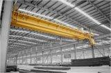 Kundenspezifischer Auslegung-einzelne Haken-Doppelt-Träger-elektrische Hebemaschine-Laufkran